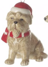 Dog with Scarf and Hat