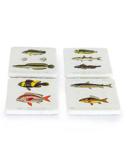 Set of 4 Fish Coasters