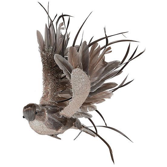 Fly Feather Bird