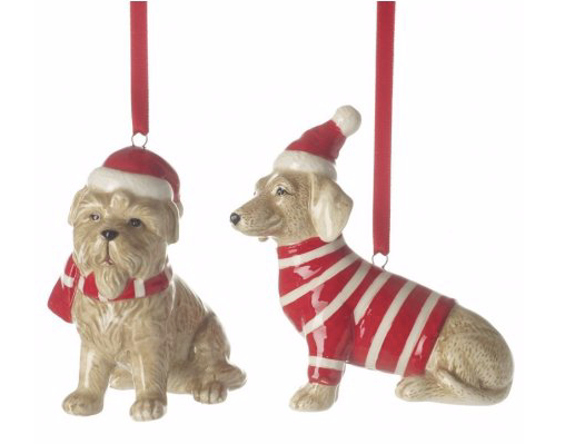 Dog with Christmas Jumper and Hat
