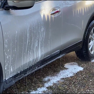 Nissan Rogue Exterior Cleaning