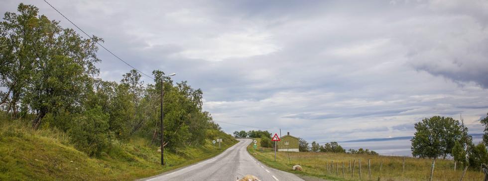 Olderfjord.jpg