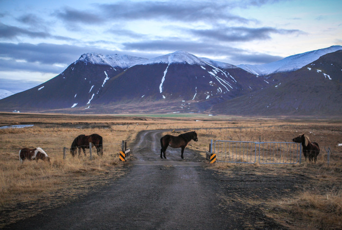 Islanti-4.jpg