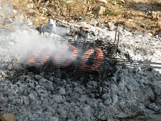 Barbecue back to basic