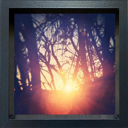 Untitled observation (#25) - framed