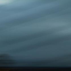 Transient Nature (untitled #06)