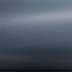 Transient Nature (untitled #13)