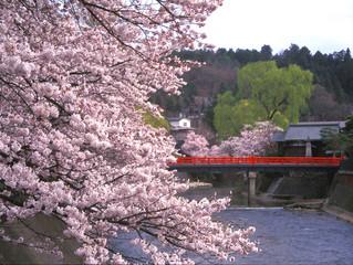 【高山】4月1日~4日の宿泊予約ありがとうございました。