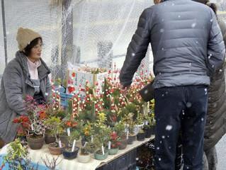 【大正高山】12月4日~9日の宿泊予約ありがとうございました。