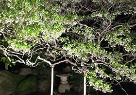 【金沢】4月29日~30日の宿泊予約ありがとうございました。