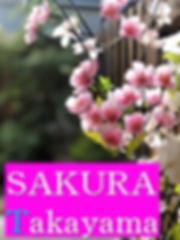 SAKURA英語.jpg