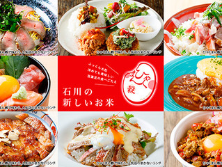 【Kanazawa】Thank you for your reservation from Oct 21st to 25th.