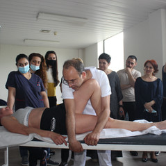 Seminar on Osteopathy and Tuina
