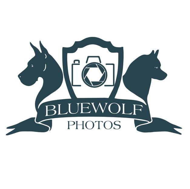 BlueWolf Photos