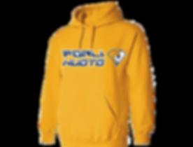 Gold hoodie copy copyW.png