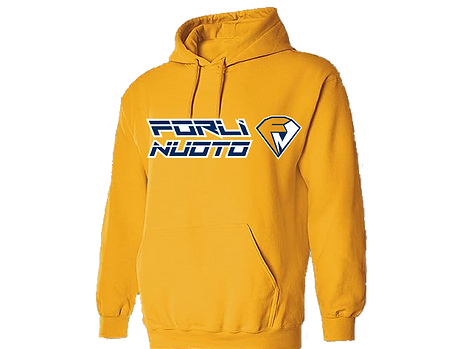 Gold hoodie copy copyW.png