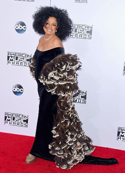 The AMAs 2014 Red Carpet