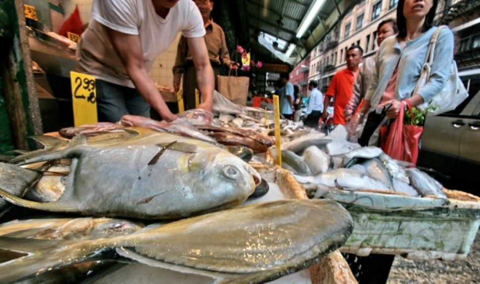 Skin Infection from Eating Fish