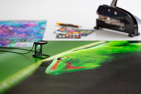photoglass-canson-provini-logo.jpg