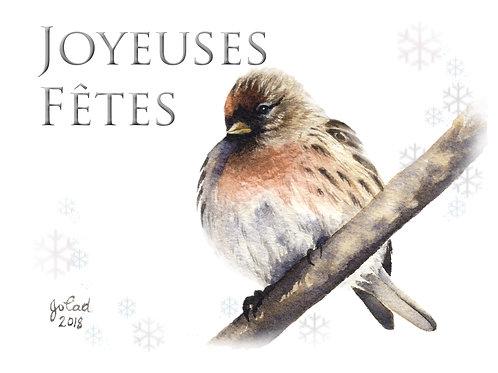 Paquet de cartes assorties Noël (7 cartes)