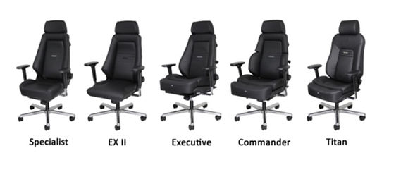 RECARO Commander Series / Specialist / EX II / Executive / Commander / Titan distributed by SeatWorks LLC