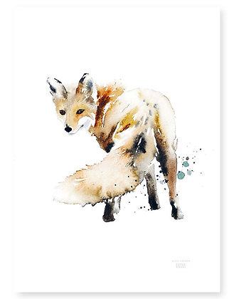 Poster - XS - Fox Tail (13x18 cm)