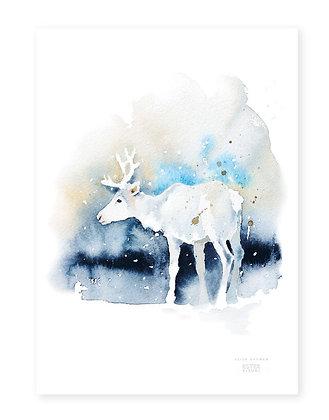 Poster - XS - Valkko (13x18 cm)