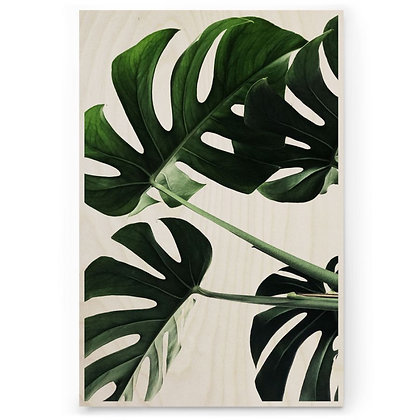 Houten Poster - M - Monstera