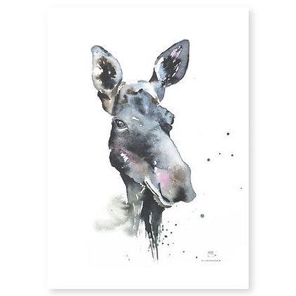 Poster - XS - Moose (13x18 cm)