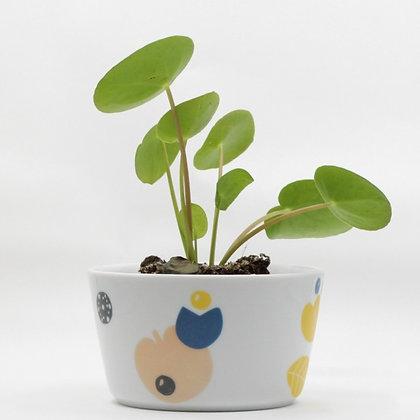 Bloempot met plant uit porselein met een speels en abstract bloemen design van All Things We Like