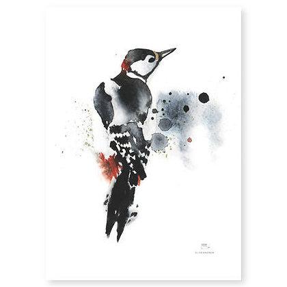 Poster - S - Woodpecker (A4, 21x30 cm)