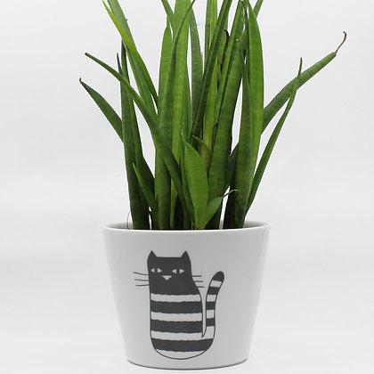 Bloempot Cat met plant van het merk All Things We Like.
