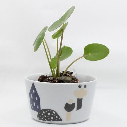 Bloempot House met plant van het merk All Things We Like