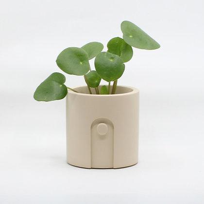 Bloempot Emilia met plant in Sandy Beige van het merk House Raccoon.