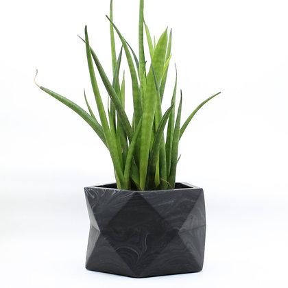 Geometrische bloempot Palua met plant in black marble van het merk House Raccoon.