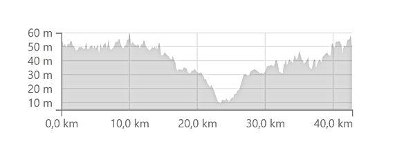 altimetria maratona.jpg