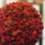 truffle.jpg