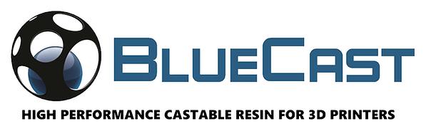 bluecast-logo.png