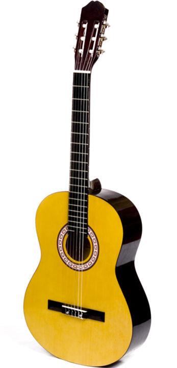 gitarregr.jpg