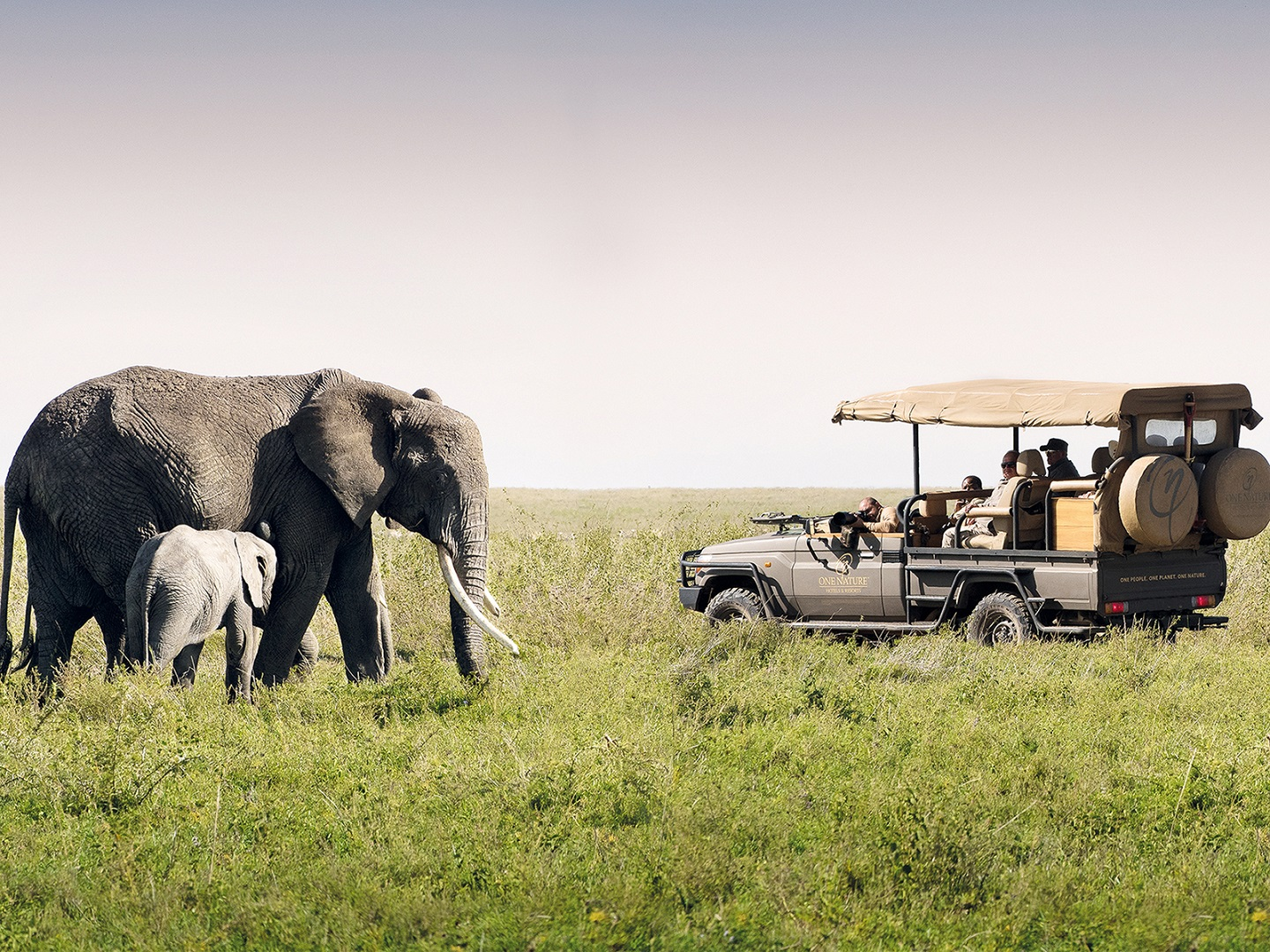 One_Nature_game_drive_klein
