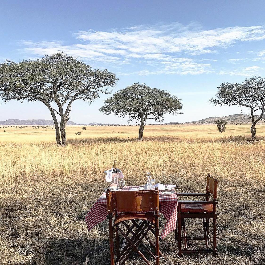 One_Nature_4_bush_dining_klein