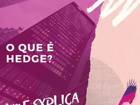 LMF Explica: Hedge