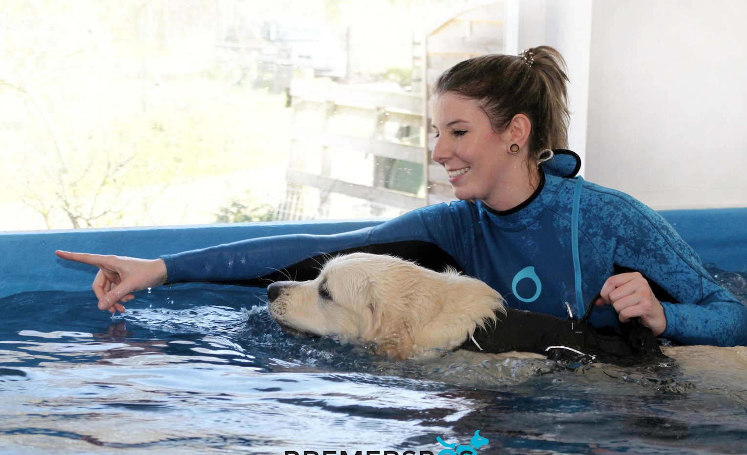 Hydrotehrapie zwemmen hond bremersbos