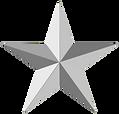 StarSilver-300x287.png