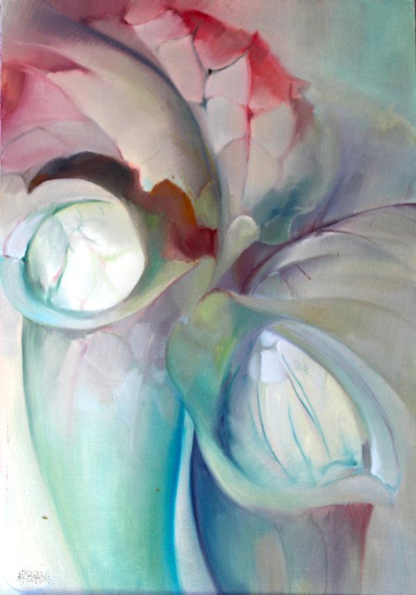Arphand Loir et cher chambord Orchidée