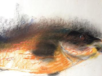ARPHAND femme peintre coloriste Magnifique pastel de poisson
