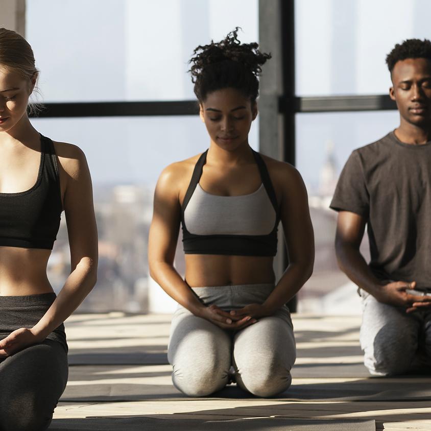 Beginner/Gentle Yoga