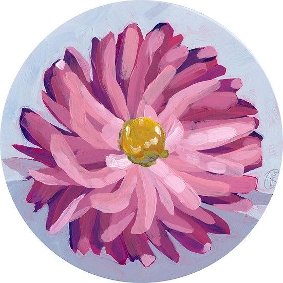 'Mini Bloom #4'