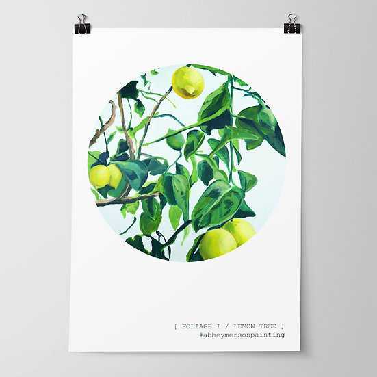 'Foliage I / Lemon Tree' Print by Abbey Merson