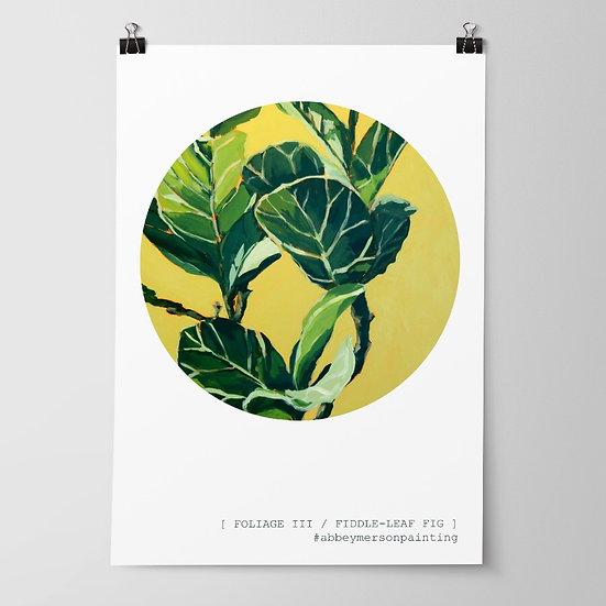 'Foliage III / Fiddle-Leaf Fig' Print by Abbey Merson
